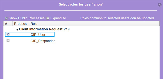 Assign-CIR-User-to-anon.jpg