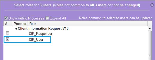 Assigning-CIR-User-role.jpg